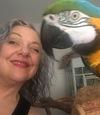 Macaw12